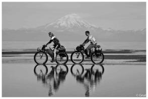 Gnat_Alaska_10-81711