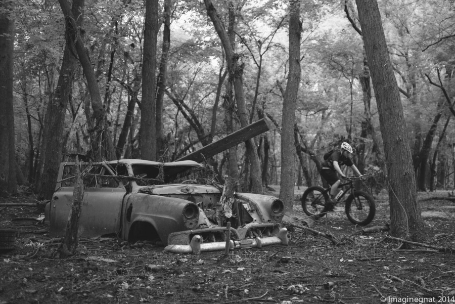 GNAT_Leica_Car