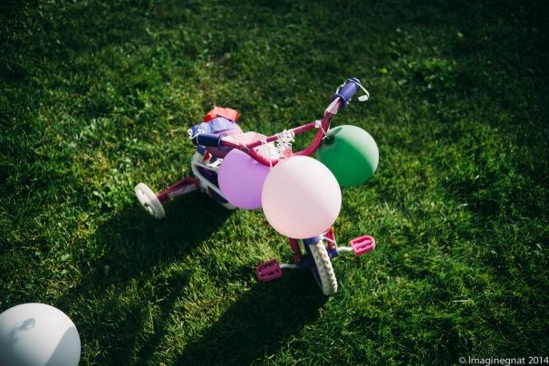 GNAT_Leica_Nathan_Baloon