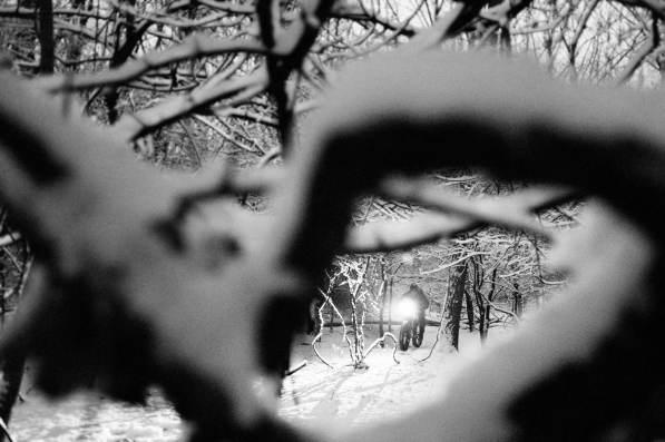 JasonBoucher_Winterwonderland_5-Exposure