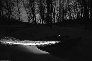 Jason_Boucher_chasinglight-6