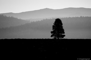 JasonBoucher_saddledrive2016_california-10