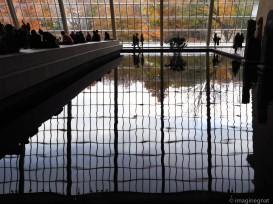 Autumn at the Met