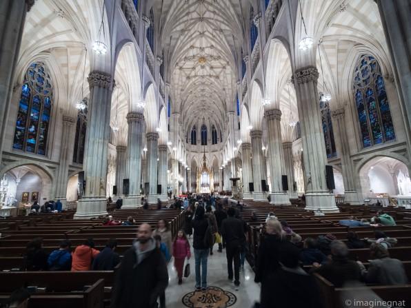 The Cathedral - Saint Patricks