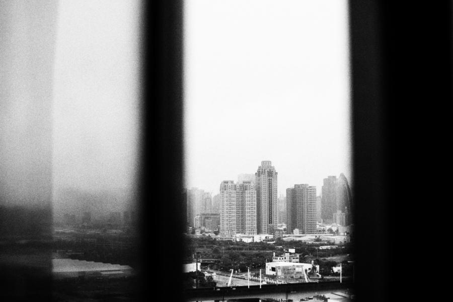 Gnat_Taiwan_Nov_4